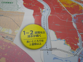 RIMG4848.JPG
