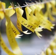 風になびく黄色いリボン.jpg